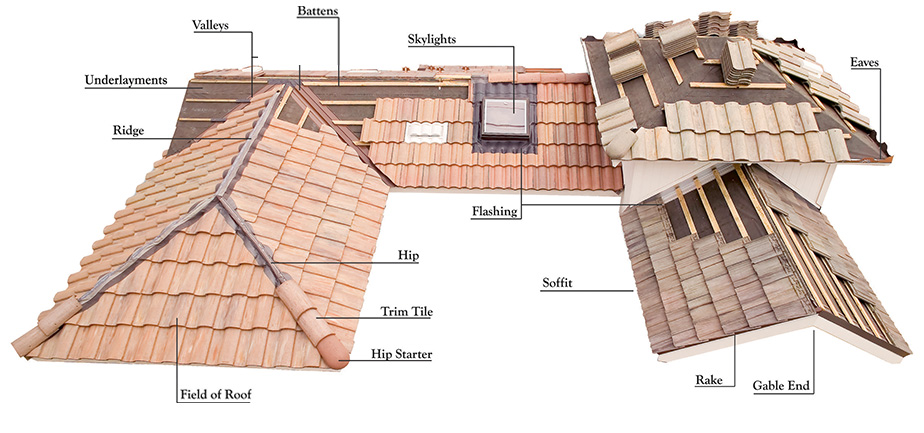 roof ponents diagram  roof  free engine image for user